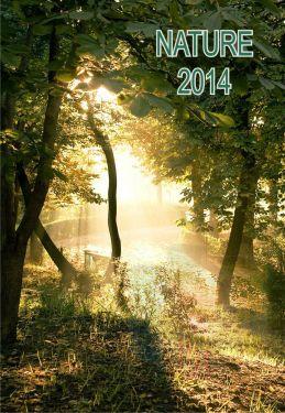 Calendar de perete 42x29.7cm A3 2021 personalizat. Calendare cu imagini 2021